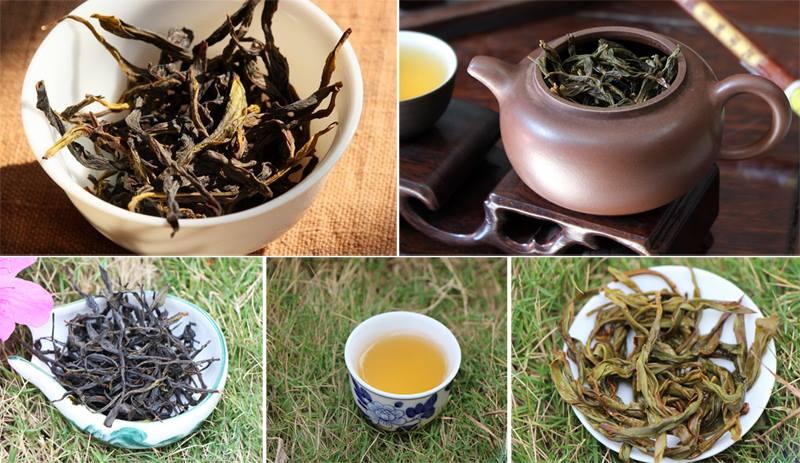 Как заваривать улуны Чаочжоу ча?